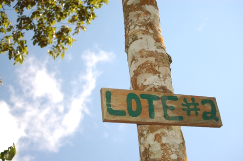 lote#2