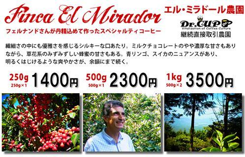 ElMirador2011-kakaku_R.jpg
