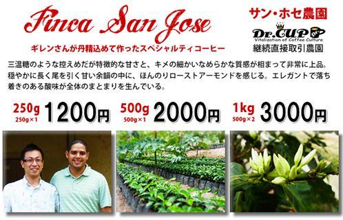 SanJose2010-kakaku_R.jpg