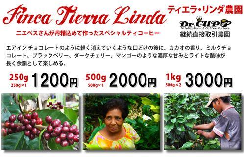 TierraLinda2010-kakaku_R.jpg